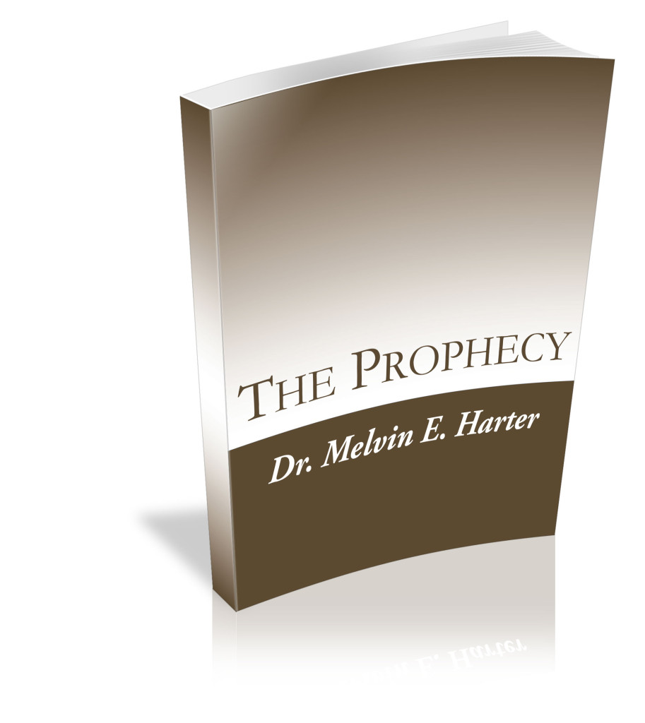 Warriors The New Prophecy Ebook: The Prophecy E-Book Download